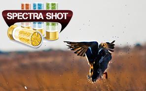 Spectra Shot