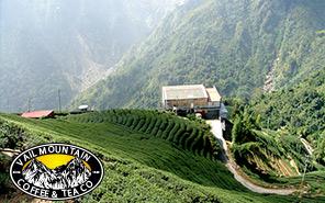 Vail Mountain Coffee