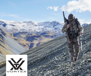 vortex_optics