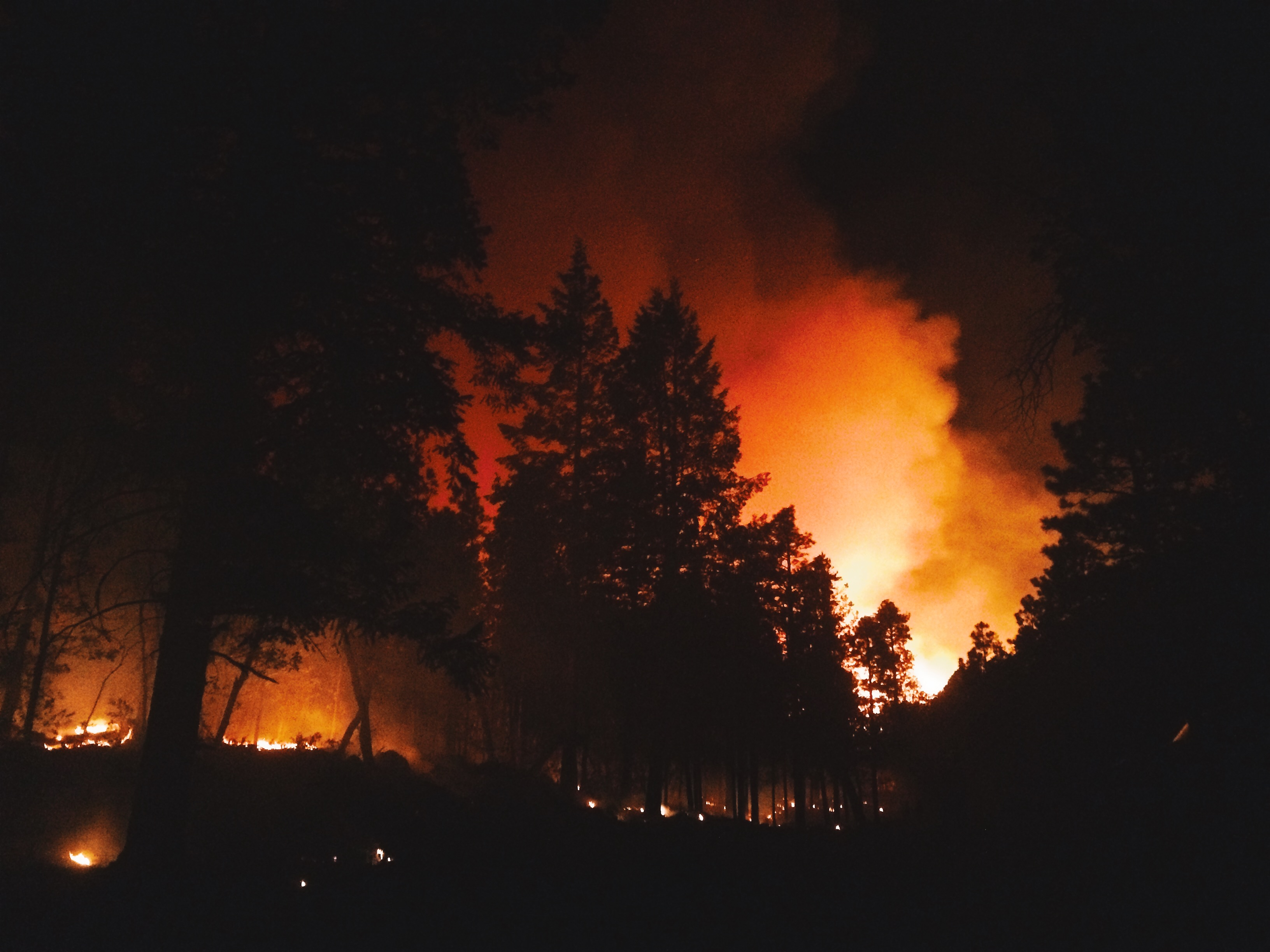 Night shot of wildland fire taken by ExpertVoice Expert Gregg Boydston