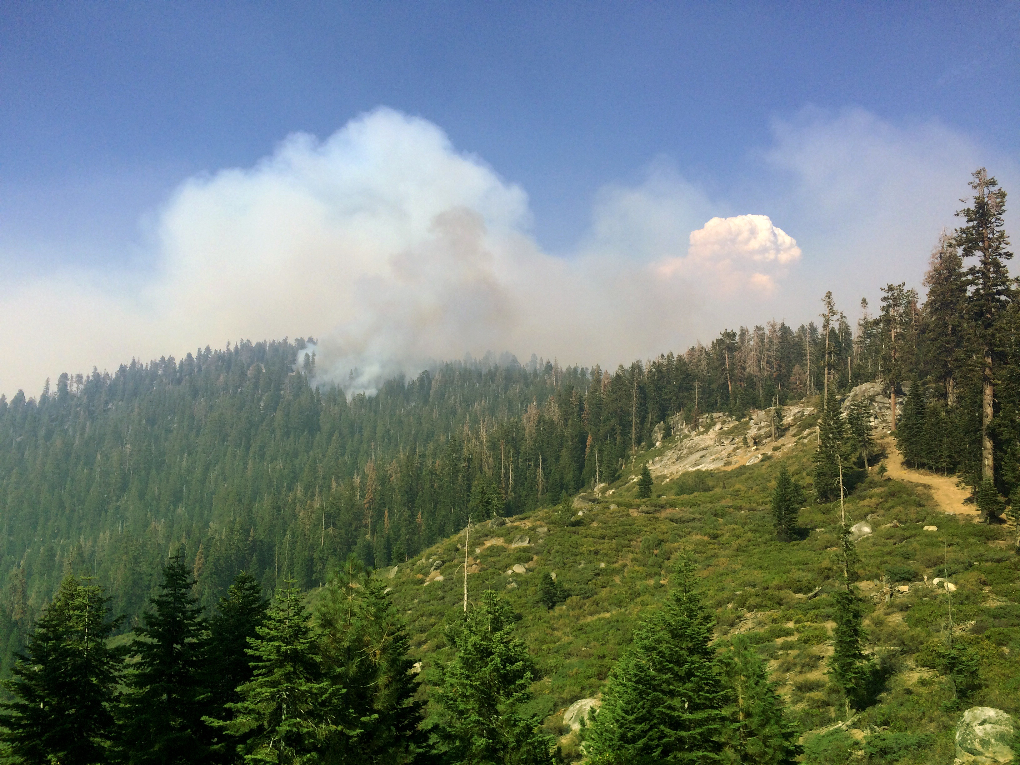 Smoke from wildland fire taken by ExpertVoice Expert Gregg Boydston