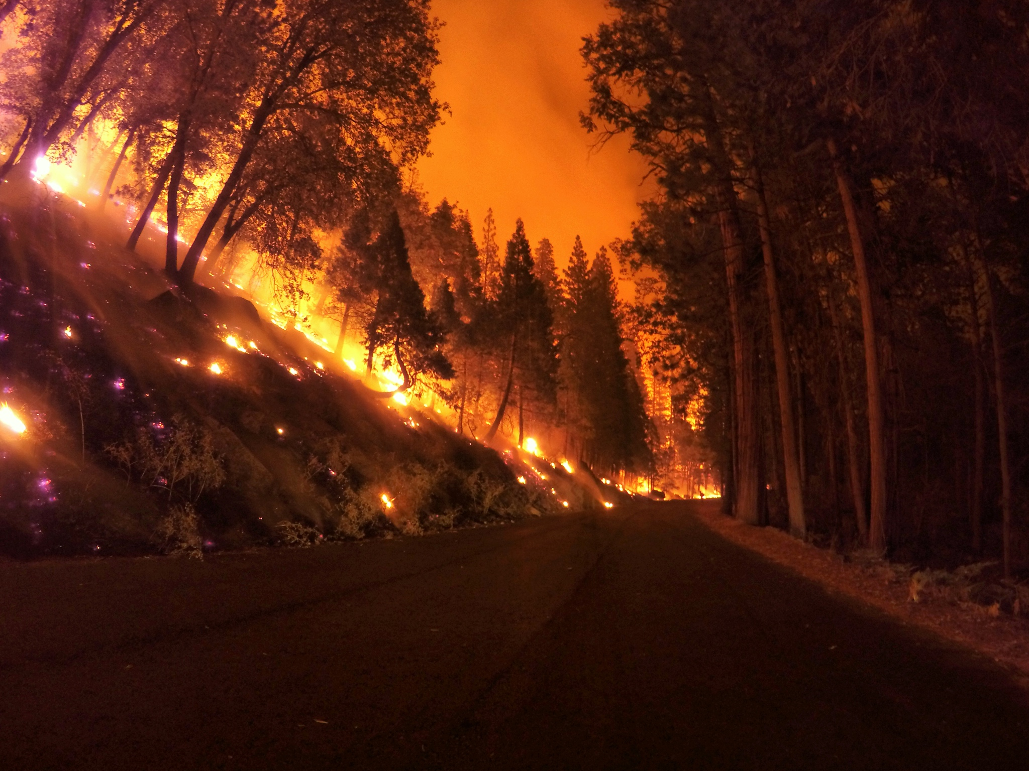 Photo of wildland fire taken by ExpertVoice Expert Gregg Boydston